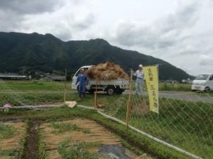 小屋ができそうなほどの大量の藁を