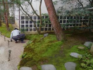 この日も庭資産が4~5人で作業しているところに遭遇。 砂利も壁を塗るようなコテでならしていく。